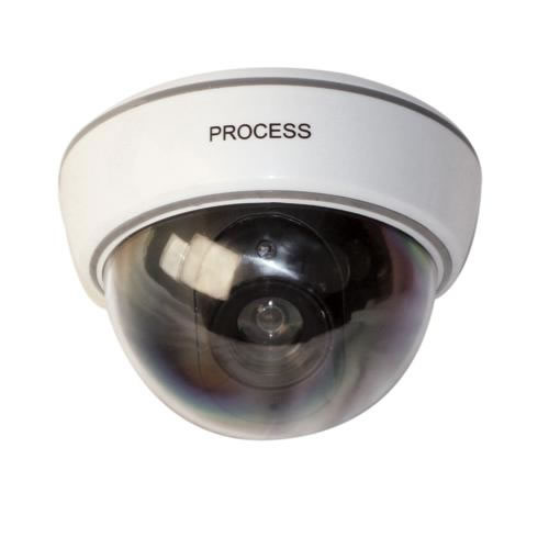 Dummy Camera in Housing with Flashing LED | TBOTECH
