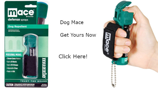 Buy Your Dog Mace Here!