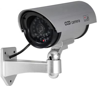 Smart Dummy Cameras