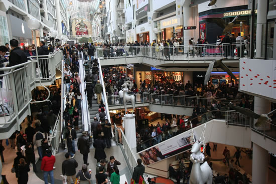 Staying Safe During Holiday Shopping